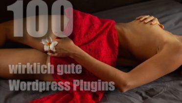 100 wirklich gute Wordpress Plugins